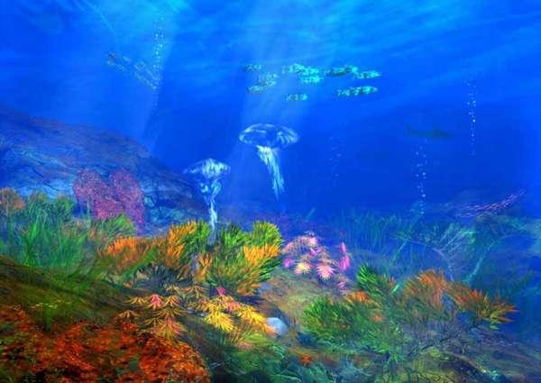 Дно океана или на дне морском. Подводный мир и обитатели морского ...