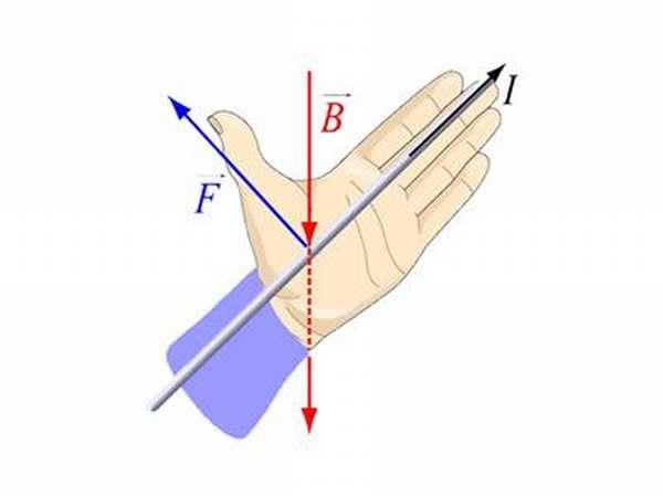 правило левой и правой руки