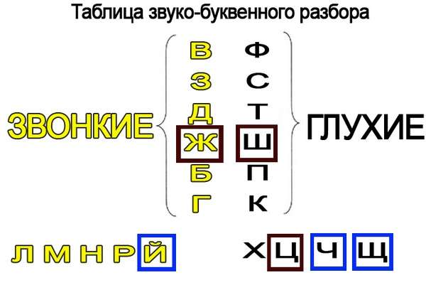 Как делается фонетический разбор слова: пример звукового анализа