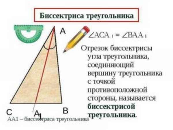 что такое биссектриса треугольника в геометрии
