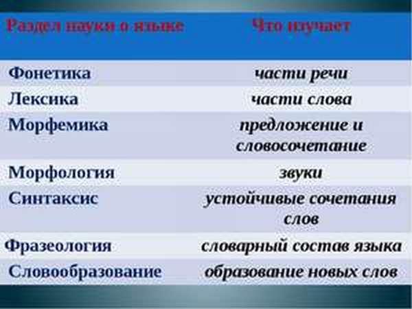 Как изучается язык