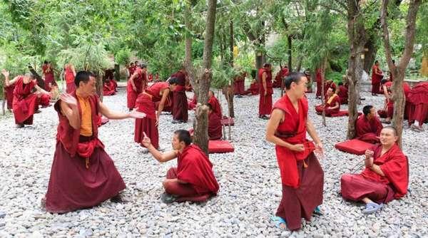 Буддийские послушники