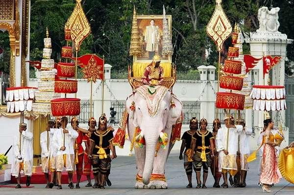 парад белых слонов