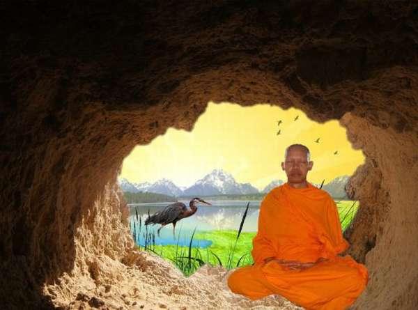 монах в пещере, цапля