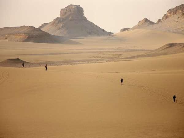 Пустынный ландшафт