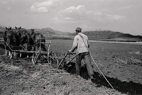 Столыпинская аграрная реформа 1906 цель, суть и результаты
