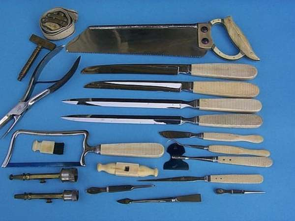 Инструмент анатома показан на фото
