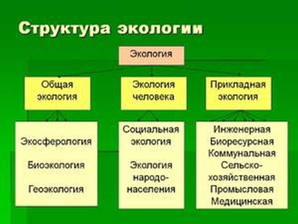 Кто изучает экологию