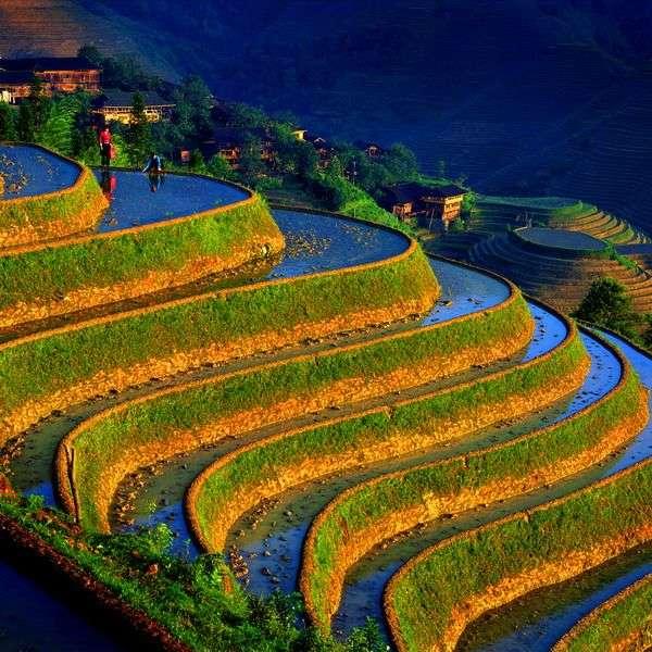 Китай: Рисовые террасы, горные пейзажи (фото)   COGITO PLANET