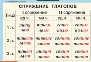 Изучение частей речи: как определить спряжение глагола в русском языке