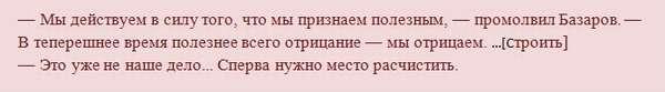 Характеристика и образ Базарова в романе Отцы и дети