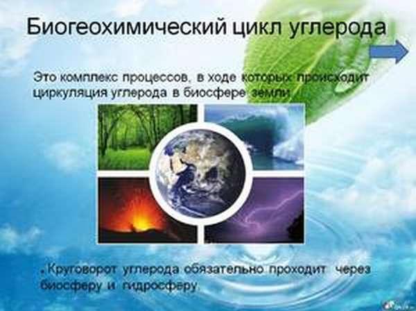 Химический элемент углерод