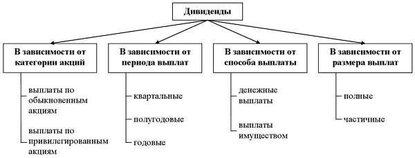 Дивиденды определение, виды, распределение, сроки получения
