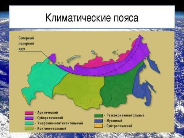 Какие климатические пояса есть в России