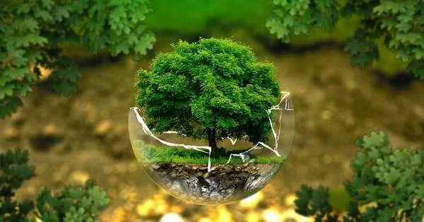 На охрану окружающей среды в КР тратится менее 1% всех расходов