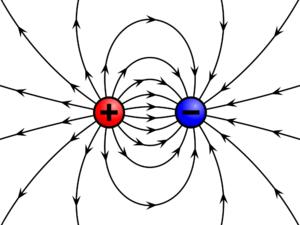 Что такое электрический заряд и в чем он измеряется?