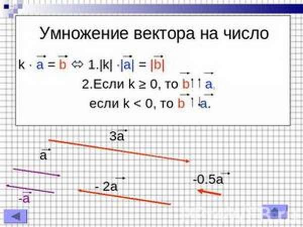 Особенности умножения вектора на число
