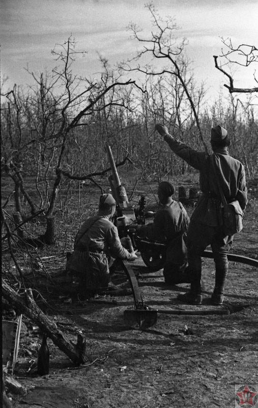 Бойцы Красной Армии ведут огонь из 47-мм противотанковой пушки под Севастополем.