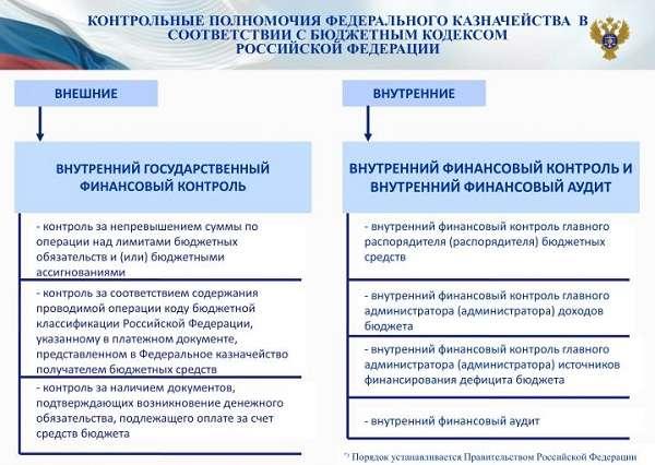 Федеральное казначейство структура и функции организации