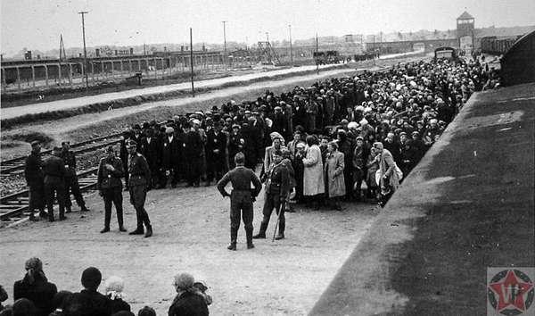 Сортировка новоприбывших узников лагеря Аушвиц-Биркенау