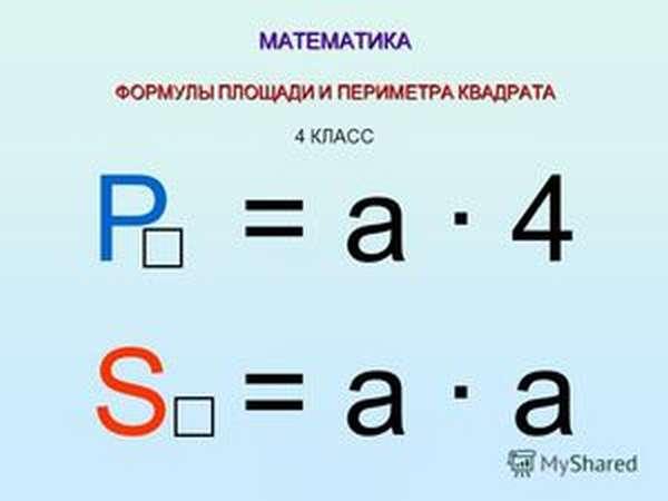 Площадь вычисление