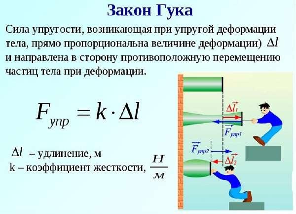 Закон Гука определение и формула