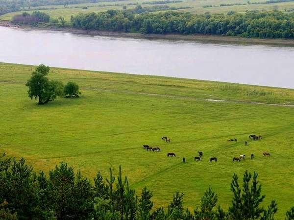 Равнины и горы России. Видеоурок. Окружающий мир 4 Класс