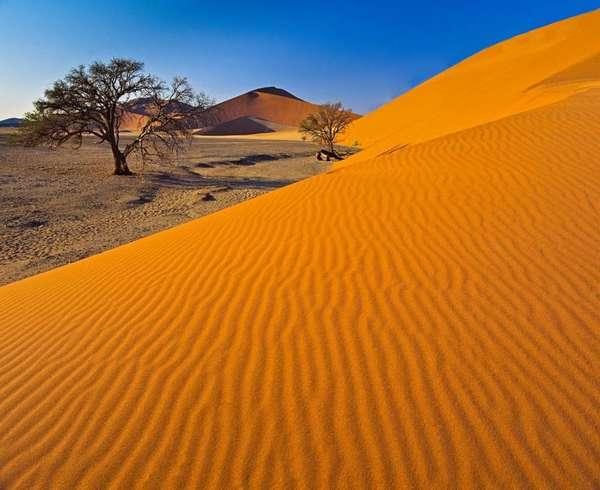 Тропические пустыни и полупустыни Африки: географическое положение ...