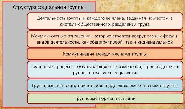 Социальные группы определение, виды с примерами, признаки и функции