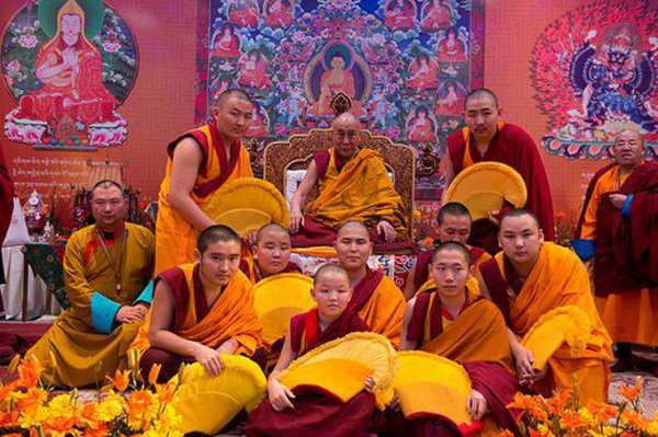 Ламы в Монголии