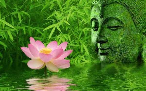 Будда и лотос
