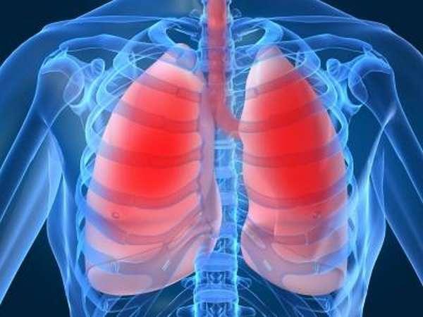 Расположение самого важного органа: с какой стороны сердце у человека