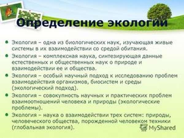 Научные сотрудники экологи