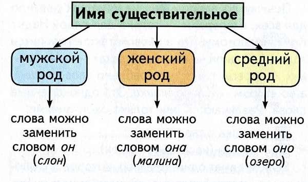 Род имен существительных в русском языке