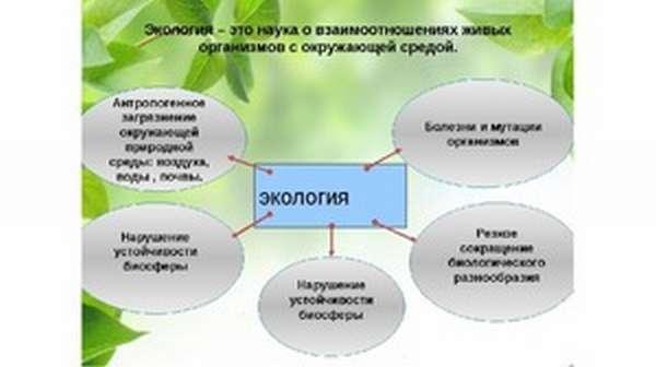 Что изучают экологи