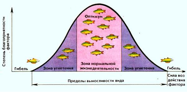 Экологические факторы классификация и характеристика групп