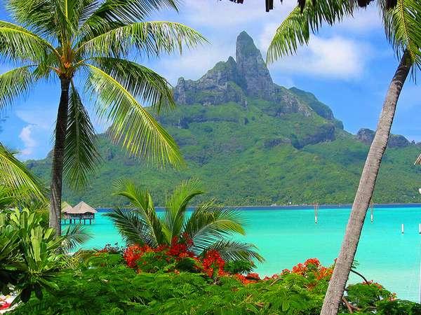 Австралия и Океания | Туристическое агентство Пионер ТУР