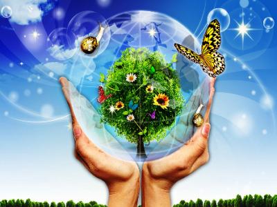 чем занимается экология