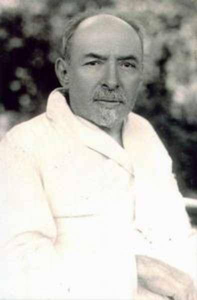 Дмитрий Ильич Ульянов (биография)