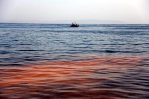 Загрязненность Мраморного моря