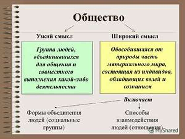 Термин общество по словарю