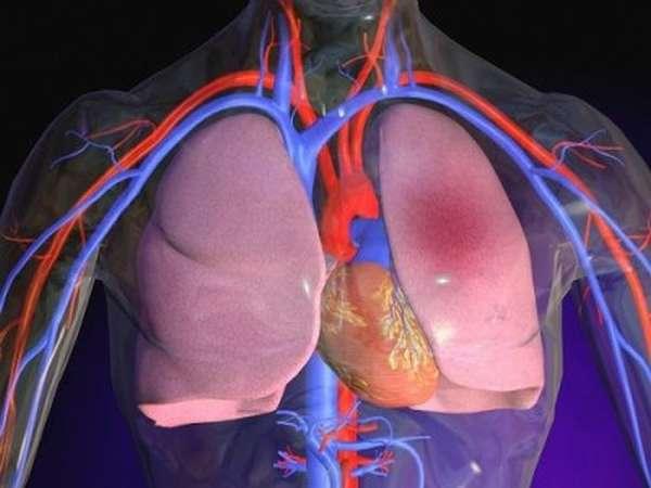 Большой и малый цикл: сколько кругов кровообращения у человека