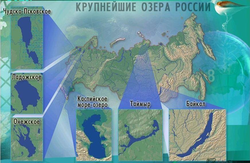 Картинки лего динозавров мир юрского периода клетки кремлевских