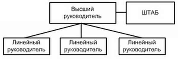 Плюсы организации